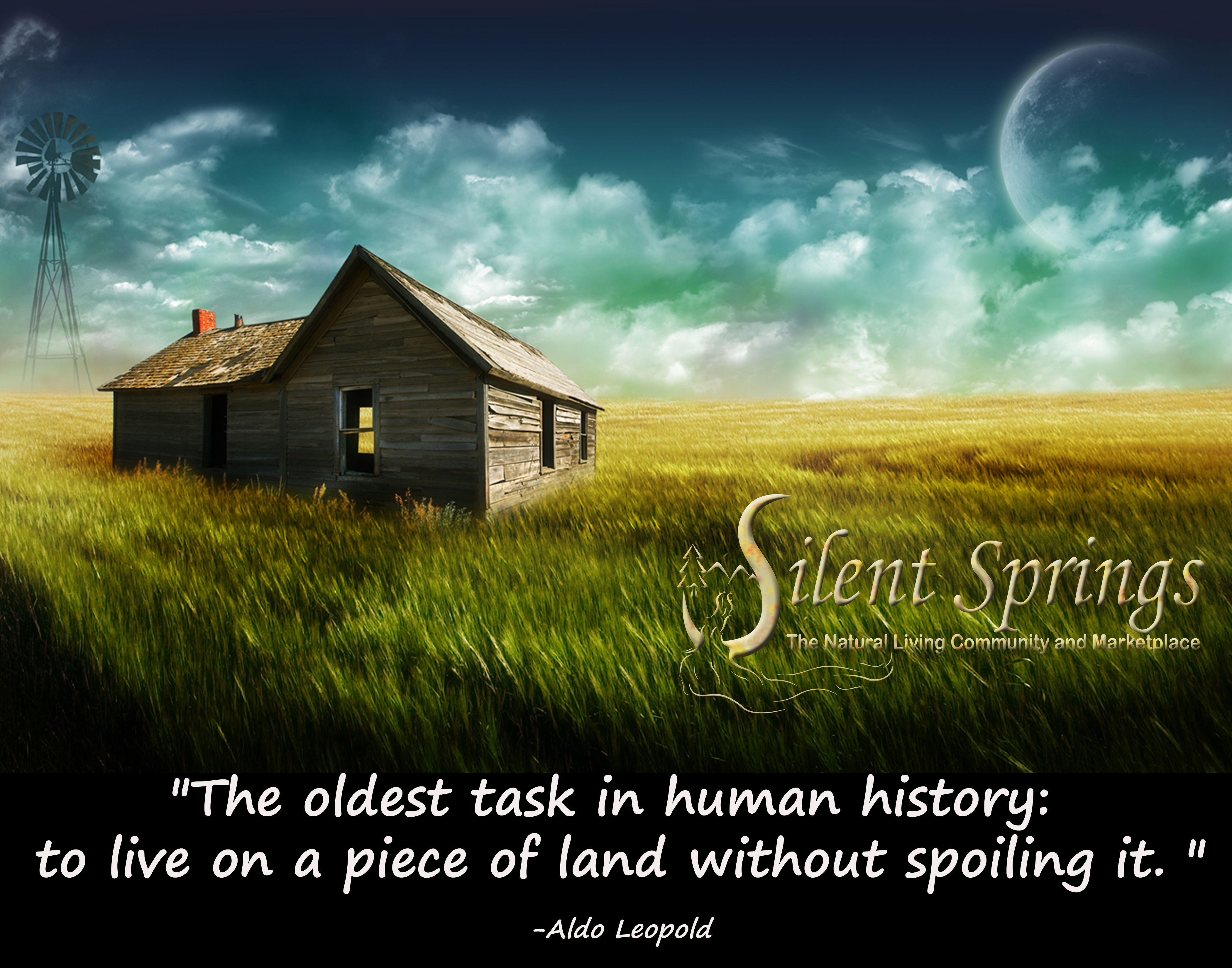 Love This Aldo Leopold Quote · Beautiful Nature WallpaperArtistic ...