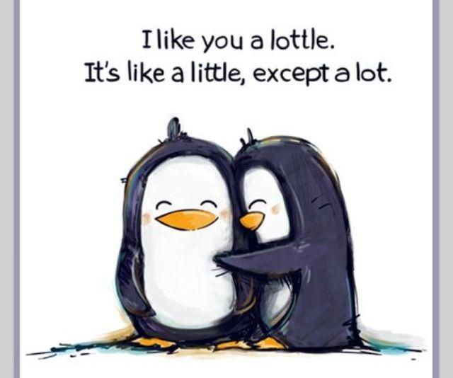 I like you a lottle...