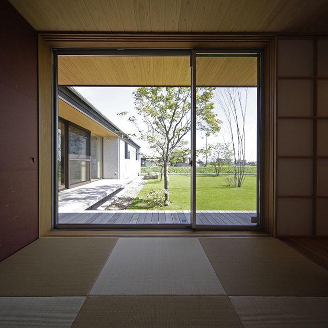 天井と軒の高さを揃えることで 室内と外が分断しない 新築 インテリア 住宅 和室