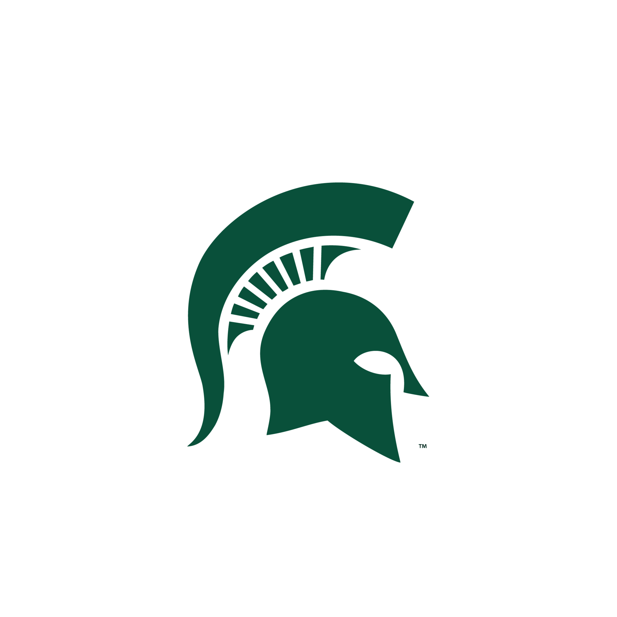 Wallpaper Michigan State Logo Michigan State Spartans Michigan State