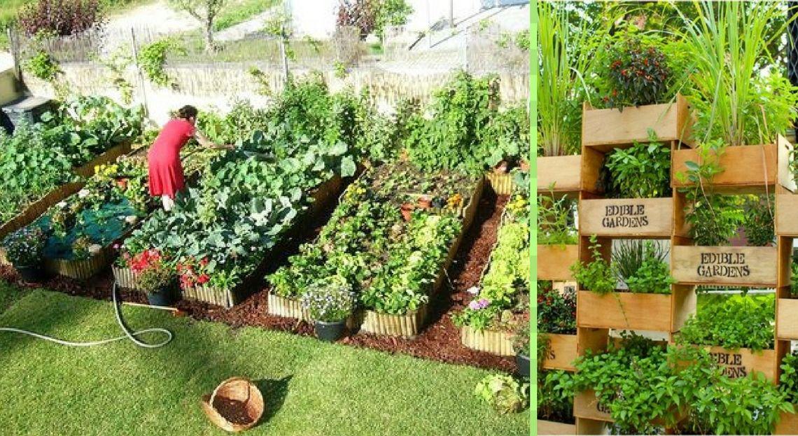 20 id es de potagers copier d 39 urgence jardin poulailler am nagements ext rieur. Black Bedroom Furniture Sets. Home Design Ideas