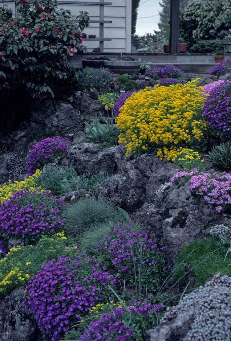 naturstein trockenmauer bepflanzen - geignete pflanzen für