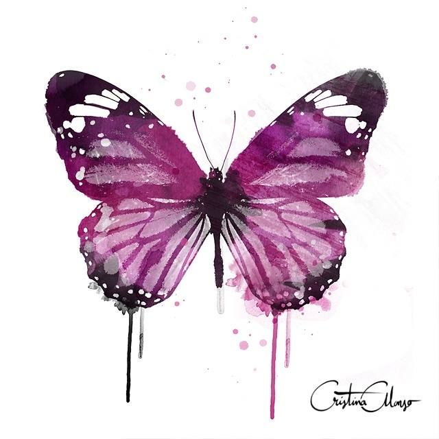 Butterfly Art Painting Image By Omar Essam On Butterfly