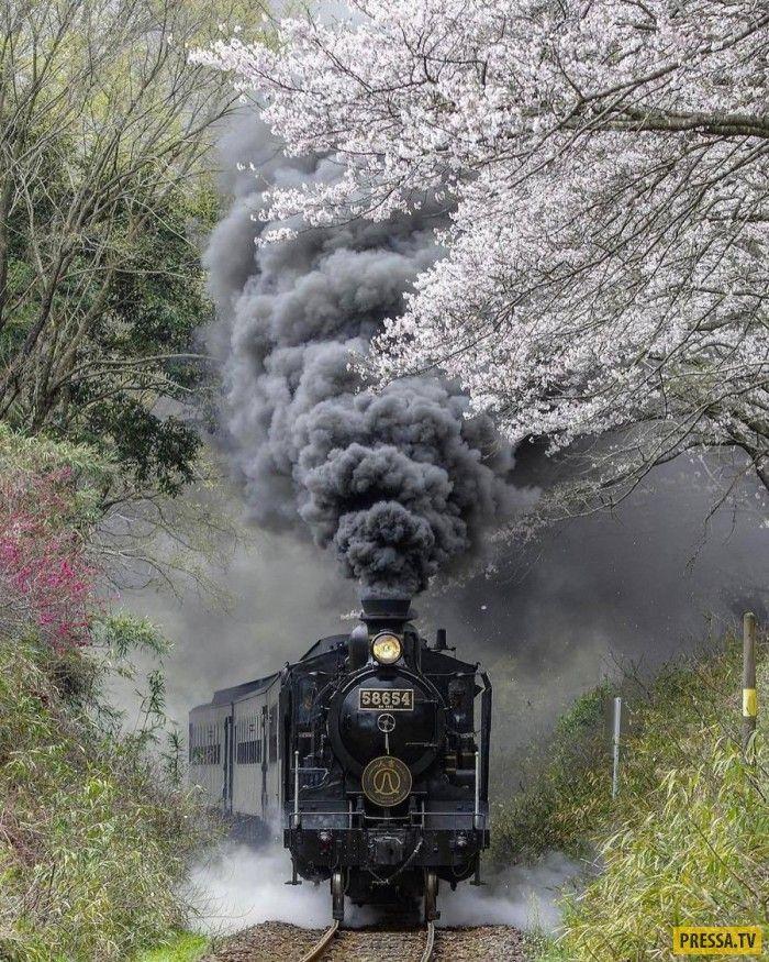 железнодорожные приколы фото средние века из-за
