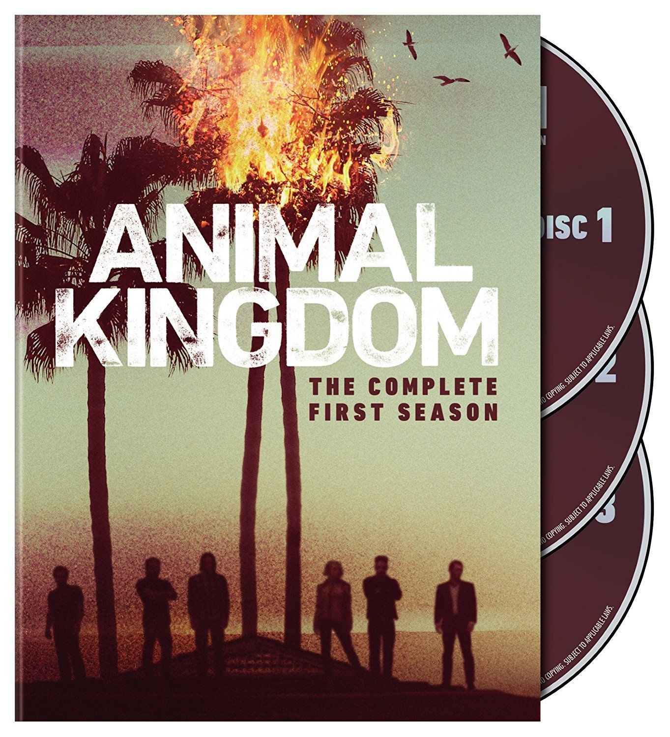 Animal kingdom the complete first season 1 dvd 2017 3 disc set 172645509038 for 23 50