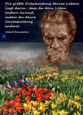 Albert Schweitzer | Zitate | Quotes, Society quotes und Words