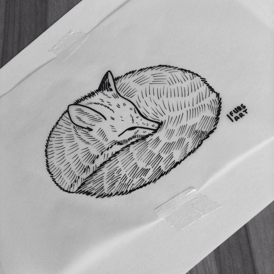 Sleeping fox. ⚓️ Guys, if you want to use my designs for your tattoos, please email me at fursart.ca@gmail.com I can send you a pdf from the right angle for $20. For my traditional(color) designs it's just $10. Custom designs are $30-60 for dotwork and linework and $20-30 for traditional. Peace ⚓️#blackwork #linework #dotwork #tattoo #design #illustration #vsco #blacktattooart #ink #penandink #drawing #art #sketch #doodle #kyiv #blackboldsociety #blacktattoo