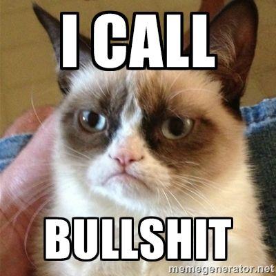 call bullshit grumpy cat meme generator