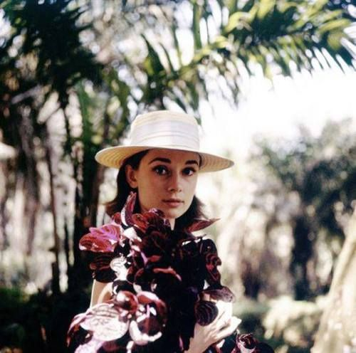 "Audrey photographed at Belgian Congo by Leo Fuchs during break in the filming of ""The Nun's Story"" 1958 