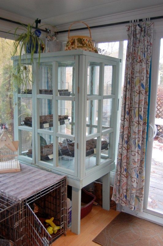 Recycling Old Picture Frames For An Indoor Greenhouse Indoor