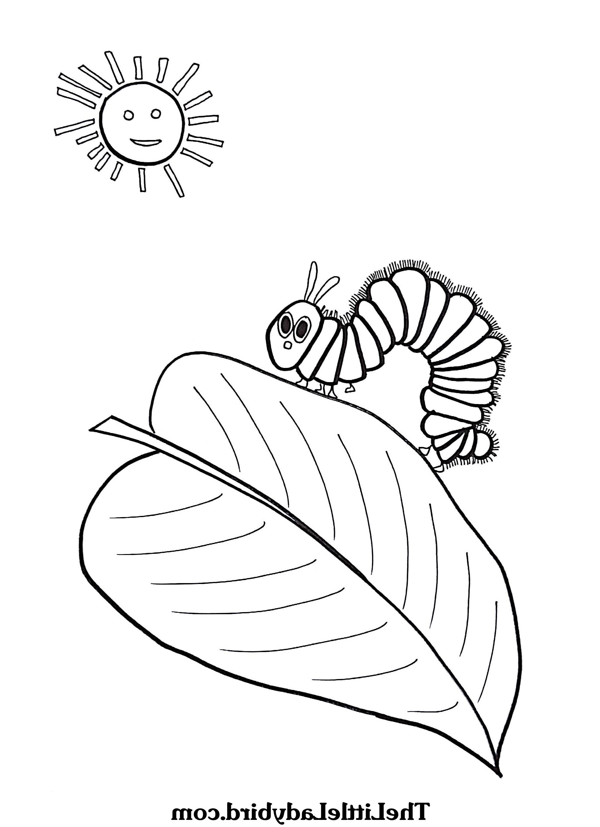 - Hungry Caterpillar Coloring Pages Very Hungry Caterpillar Coloring
