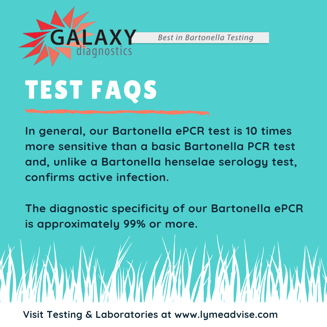 Galaxy Diagnostics' Bartonella ePCR test is 10 times more