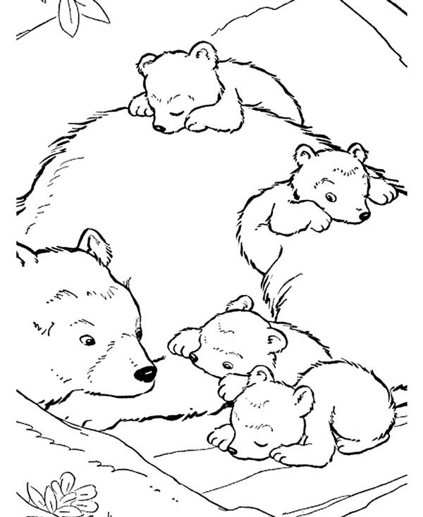 Polar Bear Baby And Their Mother Coloring Page