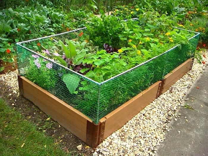 Raised Garden Bed Rabbit Fence With Images Raised Garden