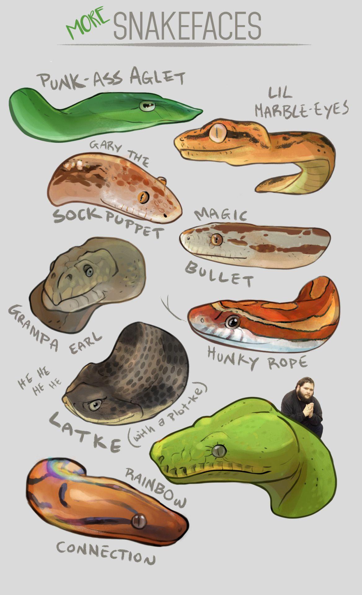 Moar snek face   Sneks n\' Gecks   Pinterest   Face, Snake and Reptiles
