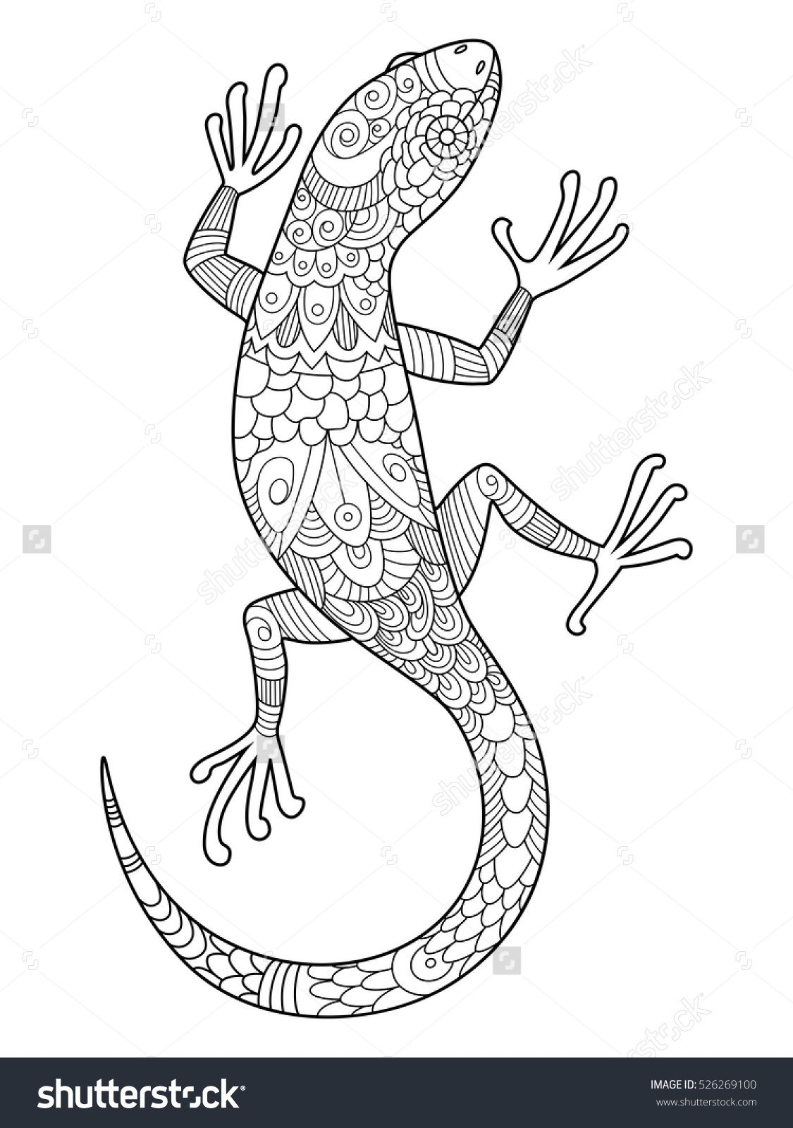 Lizard Coloring Book For Adults Vector Illustration. Anti-Stress ...