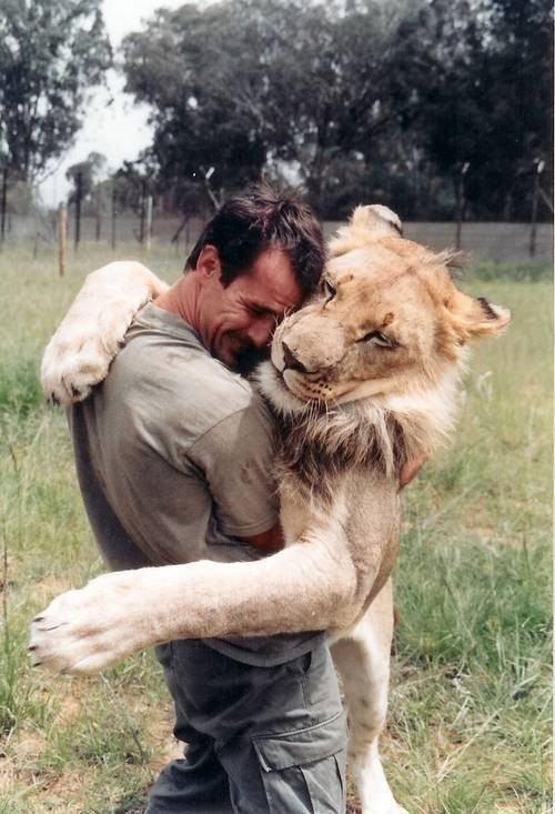 Kevin Richardson, animal behaviorist, works with some of the most ...