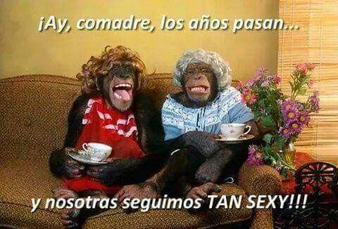 Funny Spanish Birthday Meme : Comadres memes pinterest birthday card quotes teacher jokes