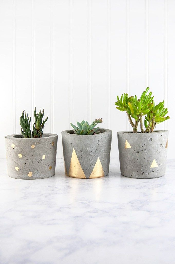 Pour Your Own Industrial Modern Concrete DIY Plant Pots, Then Decorate Them  With Glamorous Gold Accents.