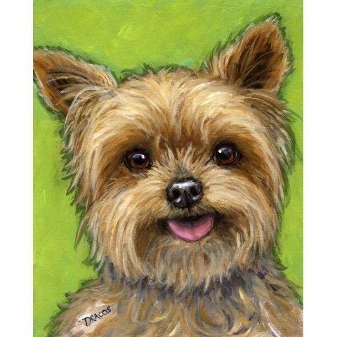 Yorkshire Terrier Dog Art 8x10 Print of Original by DottieDracos, $12.00