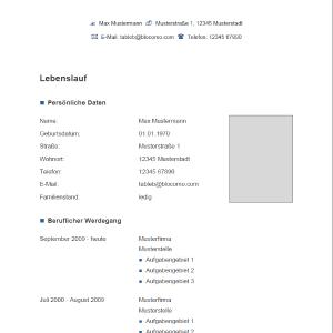 Vorlage Muster Vorlage Grau Blau Wishlist Lebenslauf