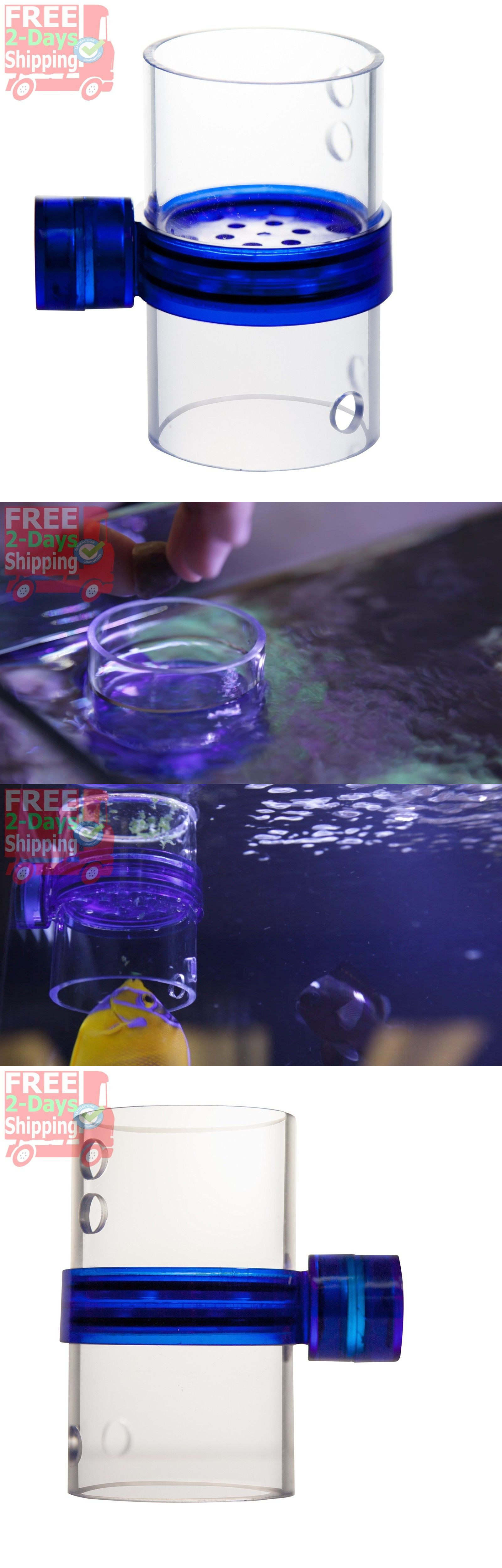 for anglefish aquarium automatic angel tank pin feeder food tantra fish nemo