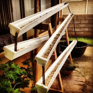 DIY Aquaponics How to build a selfwatering gutter garden