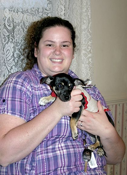 Chihuahua Puppy Sheba Gets New Owners In Richmond Va Chihuahua