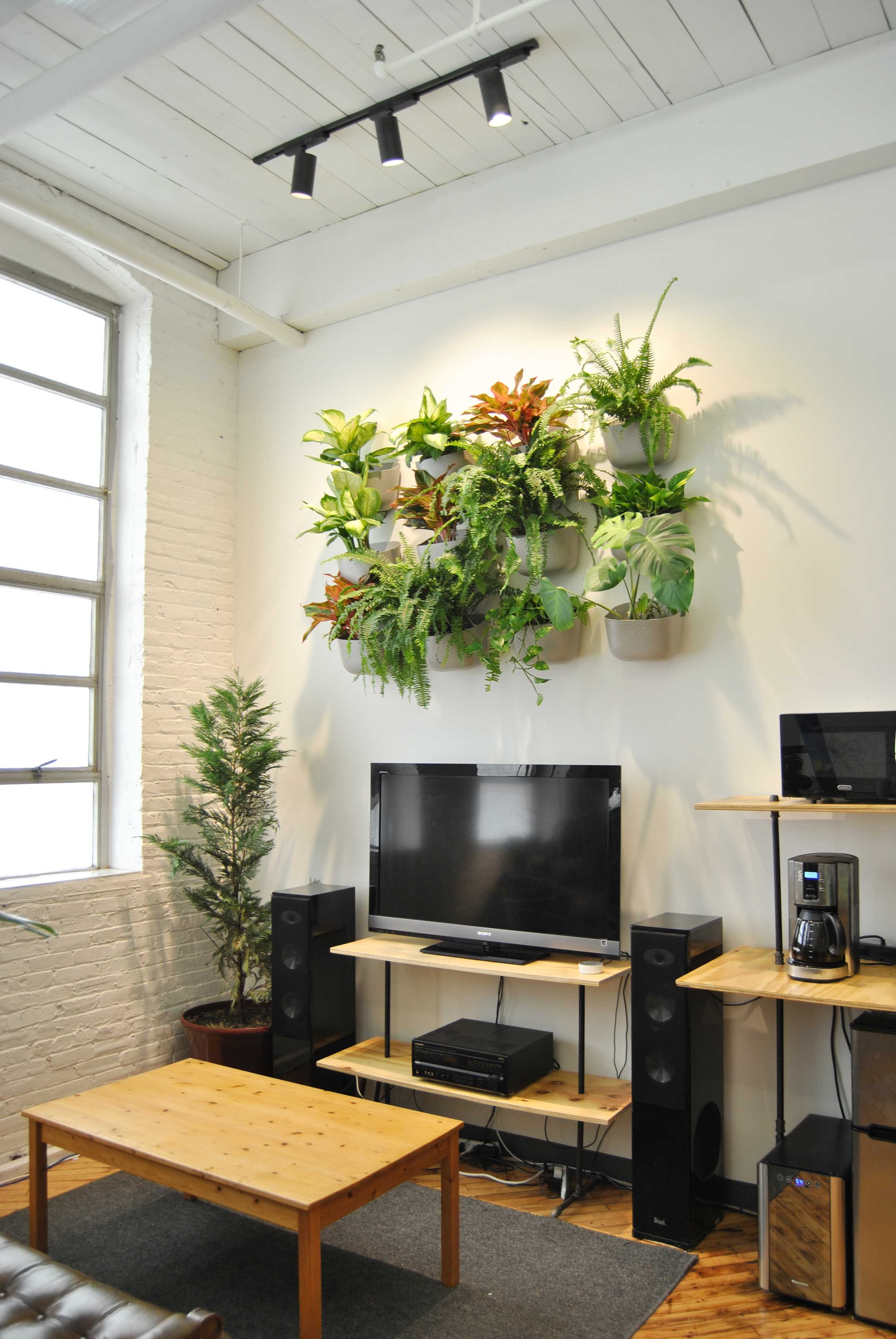 Grow Lights In Here Yup Indoor Plant Lights Living Green Wall Indoor Plant Wall