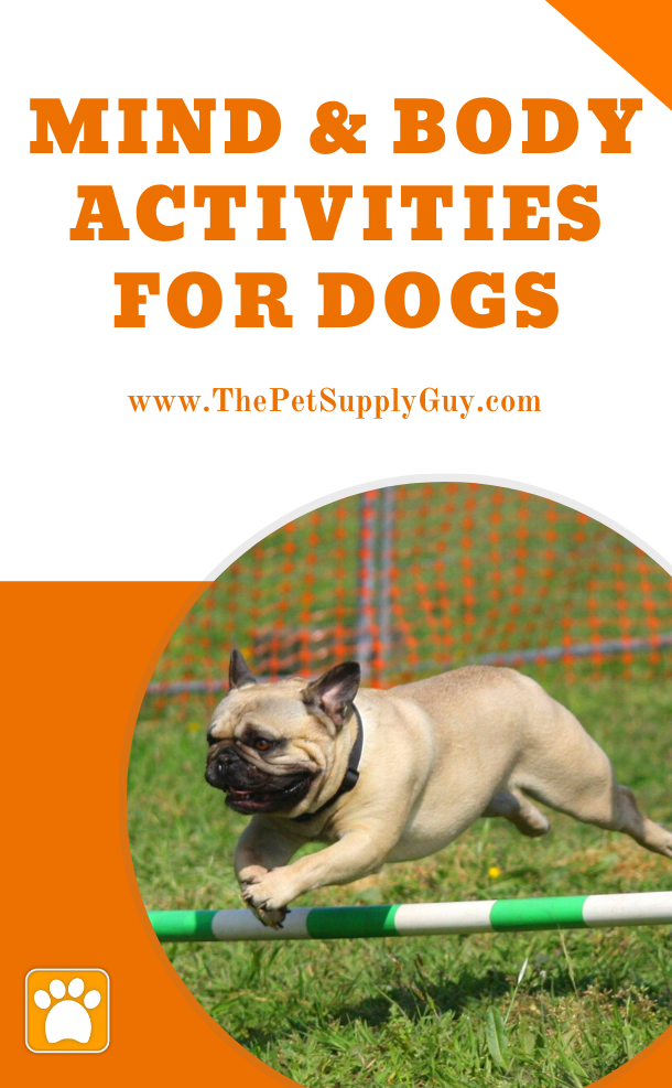 Pin On Dog Supplies Dog Care