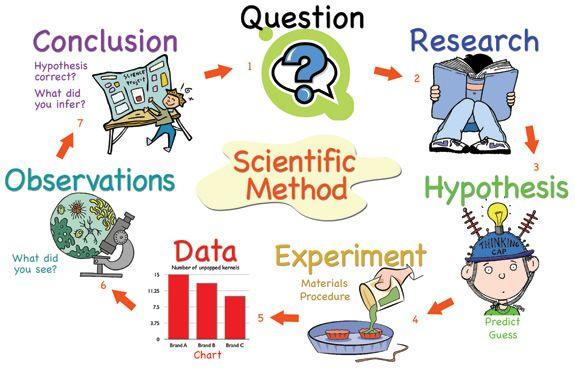 Writing the Scientific Paper