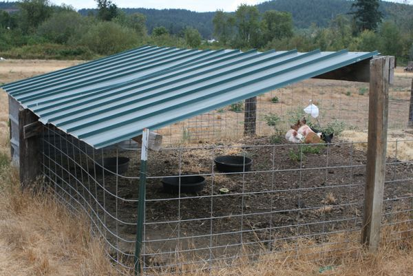 Small Farm Shelters : Easy to build pig pen homestead pigs hogs pinterest
