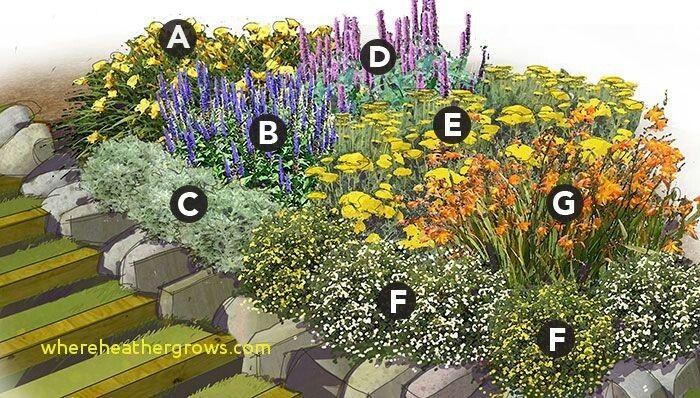 Zone 6 Lockport Ny Perennial Garden Perennial Garden Plans Perennial Garden Design Flower Garden Plans