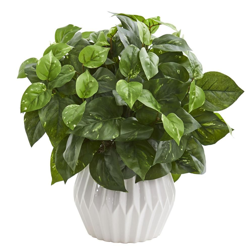 in indoor pothos artificial plant in white ceramic vase green