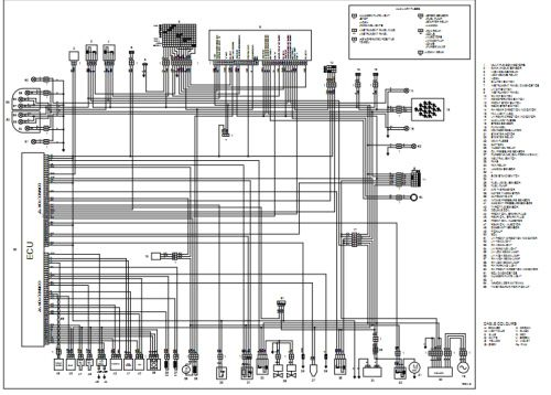 motor wiring wdsample inr wiring diagram 89 diagrams motor archer rh pinterest com Platelets Diagram Platelets Diagram