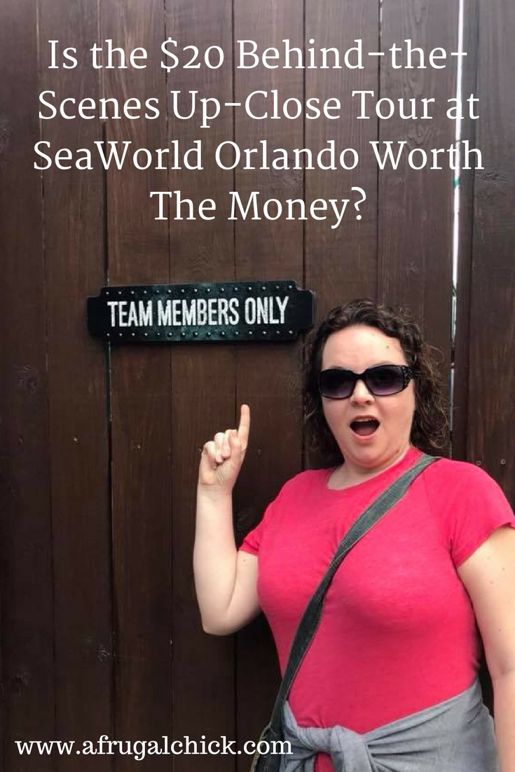 Is The 20 Behind The Scenes Up Close Tour At Seaworld Orlando