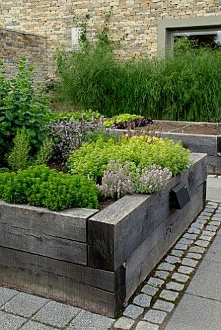 Photo of Best Vegetables For Small Raised Beds