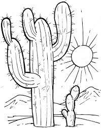 Resultado De Imagen Para Dibujos Para Pintar Macetas Cactus Para Colorear Dibujos Para Pintar Paisajes Dibujos Para Pintar