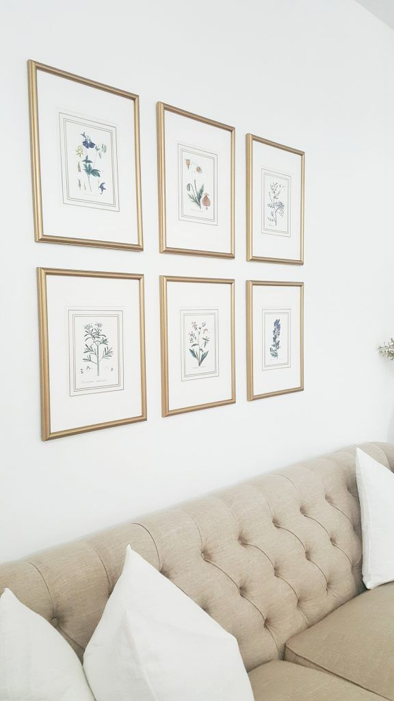 Whitelanedecor Botanical Print Gallery Grouping Of Six Botanicals Framed Gold Tufted Couch Hung Above