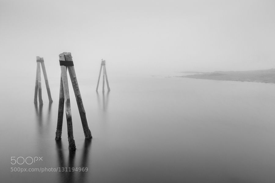Moorings in the fog by davidmarxphoto photography tipsmorning photographyvideo tutorialsadobe photoshoplightrooma videoblack and whitein