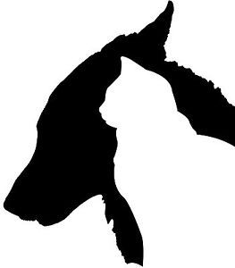Dog And Cat Head Silhouette For My Tech Shoes Dog Silhouette Cat Decal Cat Silhouette
