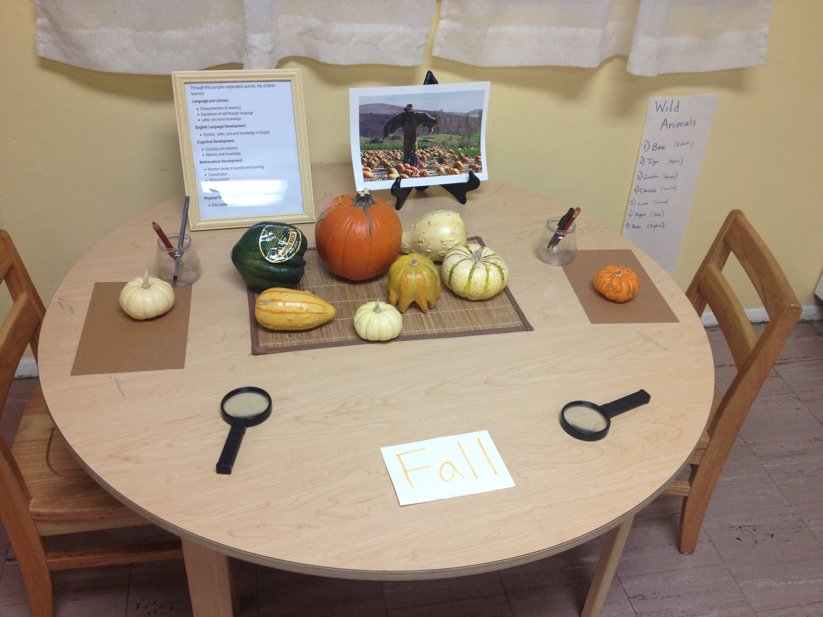 Pumpkin Painting And Provocation