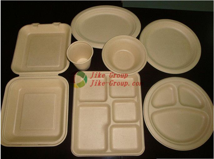 Biodegradable Fast Food Containers Wheat Straw Biodegradable