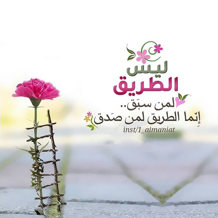 Basher Elsousy-arabic quotes   Arabic quotes, Arabic words, Quotes