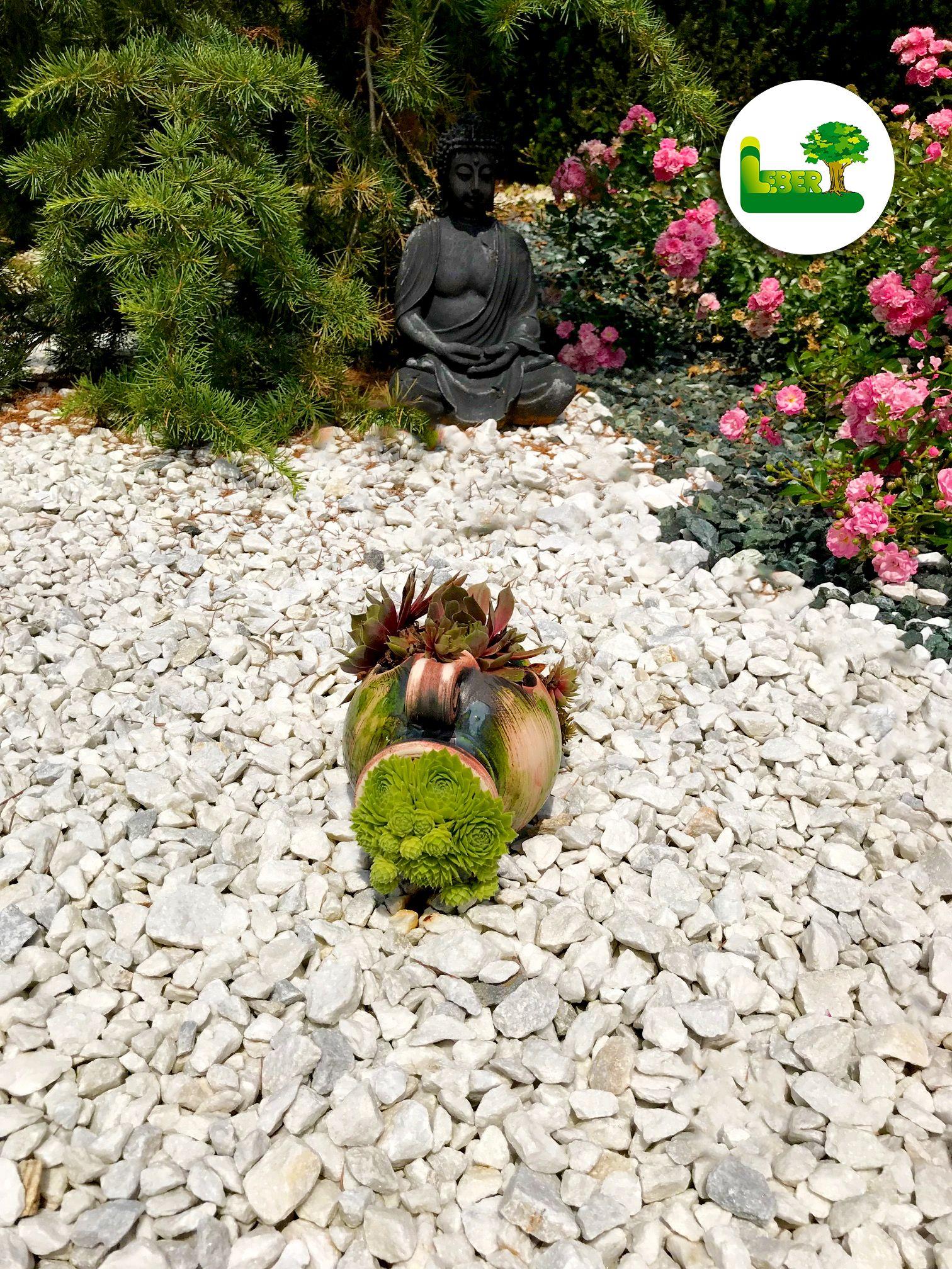 Ein Einfacher Steingarten Mit Zierlicher Gartendeko So Konnen Sie Ihren Garten Sehr Gunstig Und Pflegeleicht Gestalte Gartengestaltung Garten Steingarten