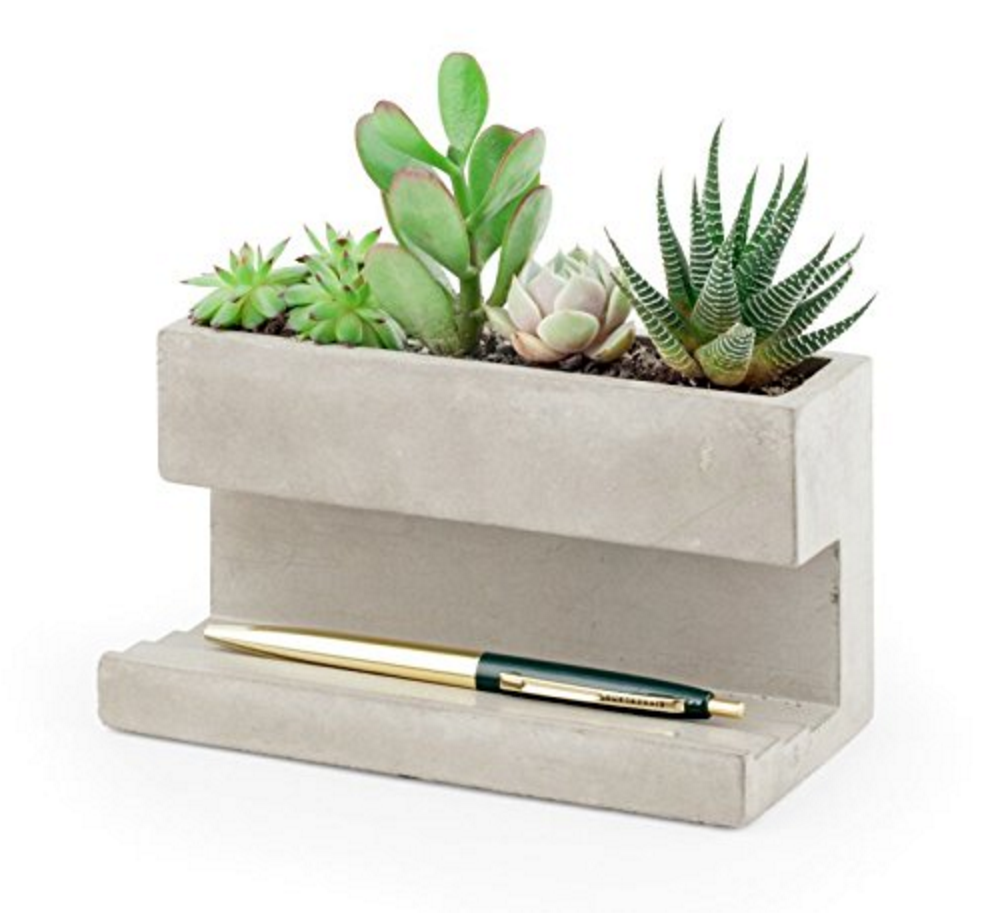 interesting concrete planter. Ideal for succulents  this desk top planter is made of solid concrete The terraced base holds pens business cards and many other small supplies Pots Desktop Ceramic Plant Bonsai Decor Clay Pottery Planters