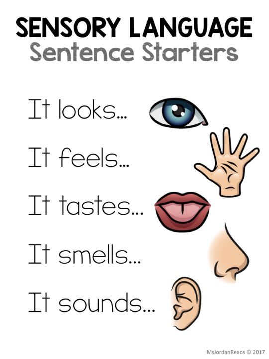 what is a synonym for sensory language
