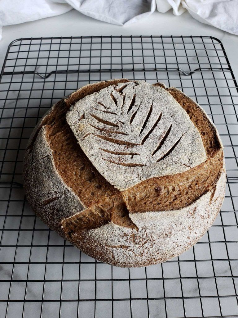 Gluten Free Sourdough Bread Recipe Gluten Free Sourdough Bread