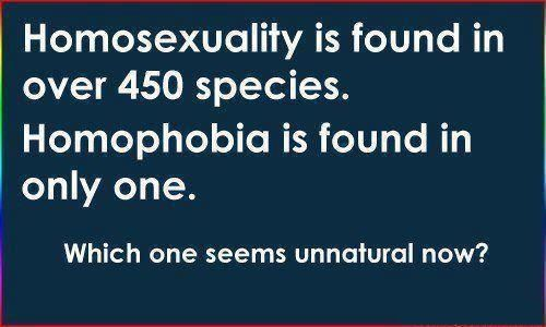 Homosexuality is found in over 450 species. Homophobia is found in ...