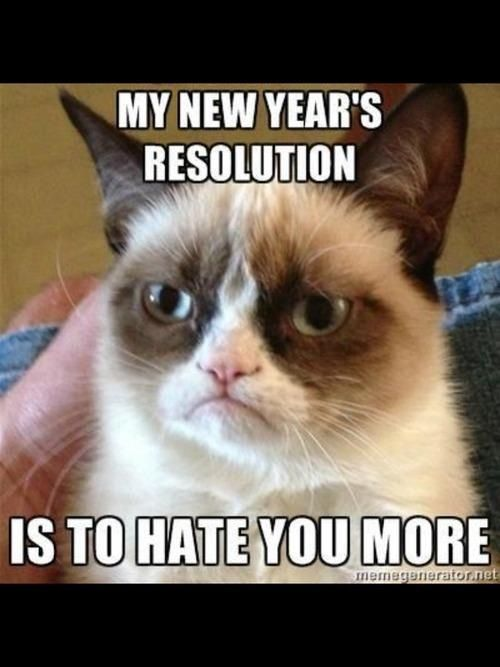 New Years resolution. Haha this isn't really my resolution, but I thought it was funny.